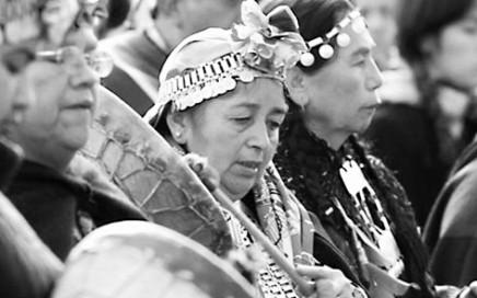 mapuche4