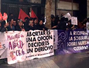 Tribunal Constitucional decide a favor de las mujeres y niñas en Chile