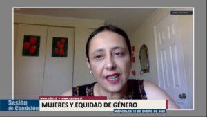 Exposiciones de Corporación Humanas y Mesa de Acción por el aborto inician histórico debate de despenalización en Chile