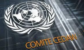 CEDAW: Comité de la ONU destaca preocupación por la situación de la mujer en Chile