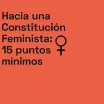 Hacia una Constitución Feminista: 15 puntos mínimos